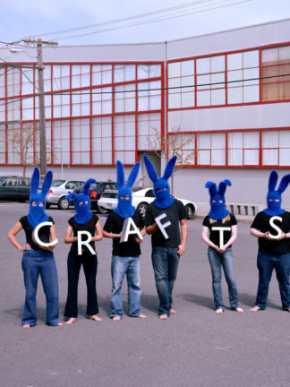 Invisible Blue Bunnies Crafts CCAC Anna Maltz